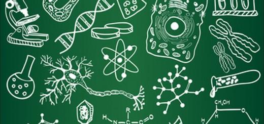 Как подготовиться к ЗНО по биологии
